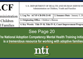 """Administration for Children and Families Cites NTI as a """"Tremendous Resource"""""""