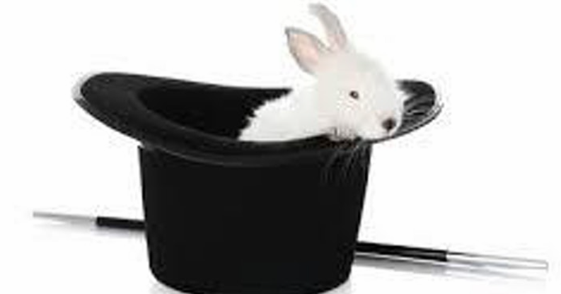 NPAC Magic Bunny In Hat Image