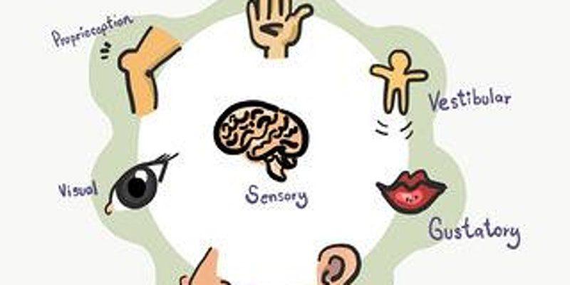 Your Childs Sensory World Workshop